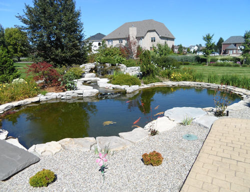 2012 Mini Pond Tour & Landscaping